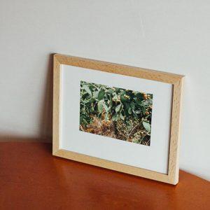 STROMBOLI PHOTOGRAPHY
